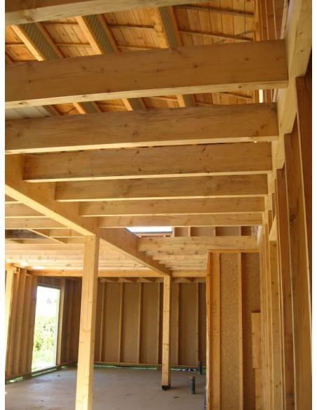 Traitement insecticide fongicide sur poutres et menuiserie, bois intérieur