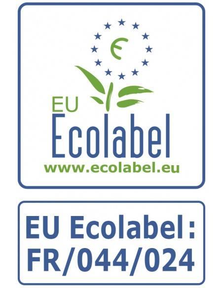 Logo Ecolabel 1919 BY MAULER fond dur parquet avant vitrif prépare parquet